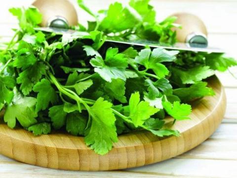 Rau mùi là nguồn cung cấp kháng sinh thực vật cho cơ thể