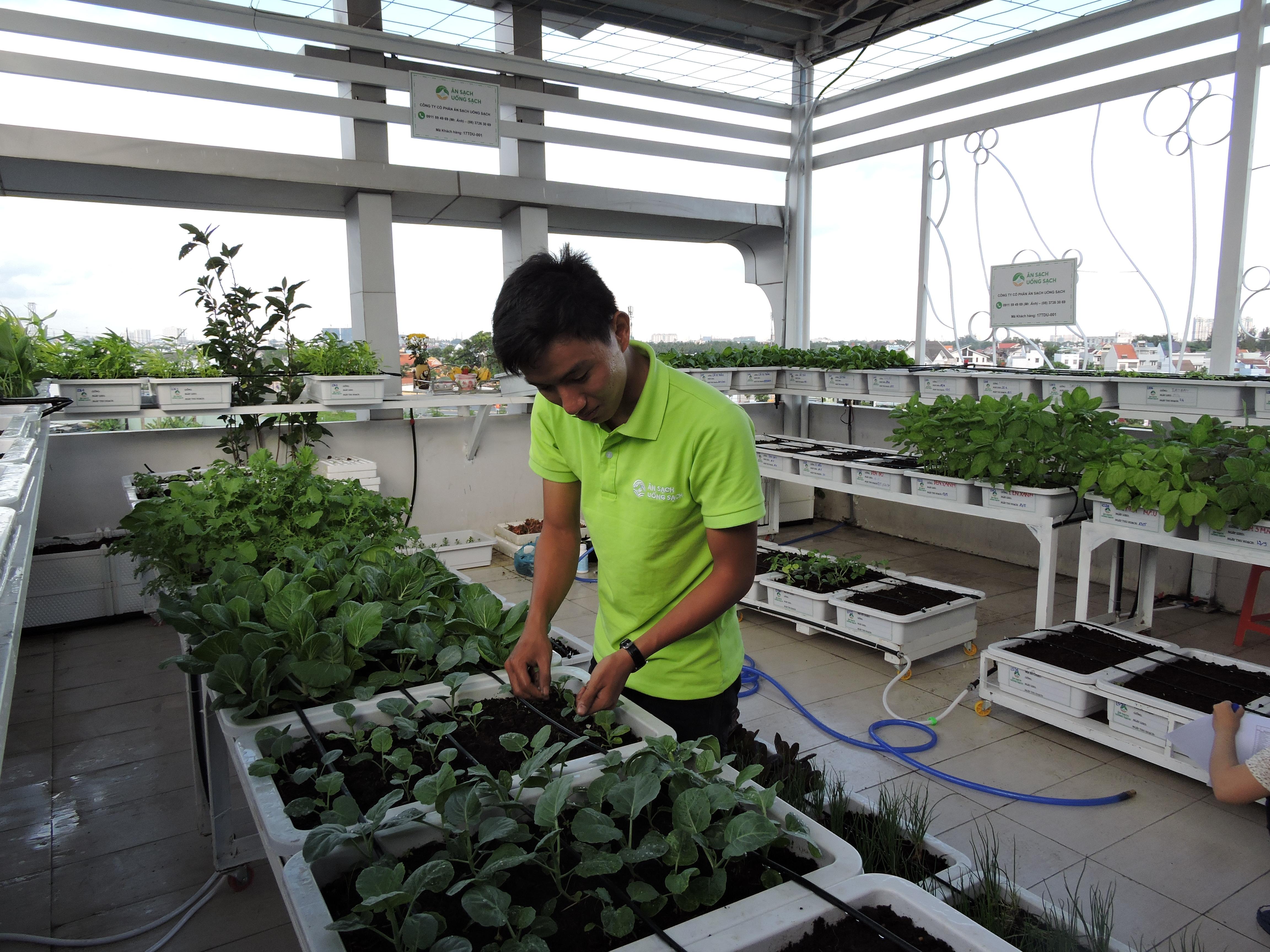 Đội ngũ kỹ sư nông nghiệp của chúng tôi sẽ đến thăm nom, chăm sóc tận tình vườn rau của Quý khách