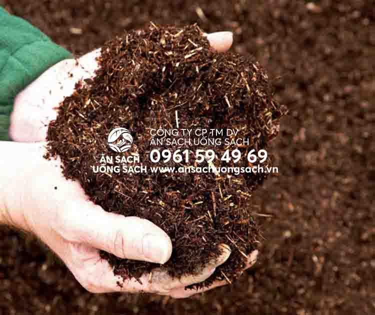 Cách ủ phân hữu cơ bón rau tại nhà bằng cách đơn giản nhất | Ăn Sạch Uống Sạch