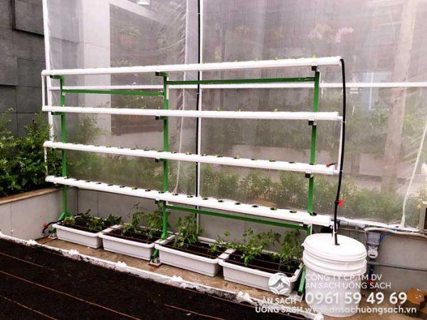 Giàn trồng rau thủy canh