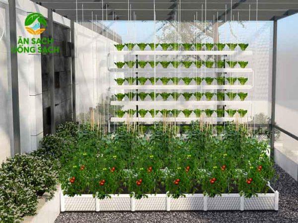 Phác thảo 3d vườn rau