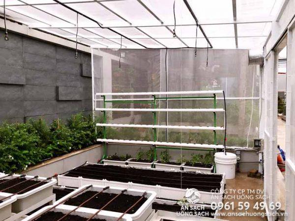 Vườn rau hoàn thiện lắp đặt