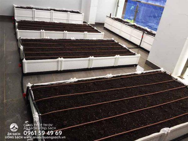 Hoàn thành công việc lắp đặt vườn rau