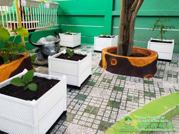 Khu vực trồng cây ăn quả của khu vườn