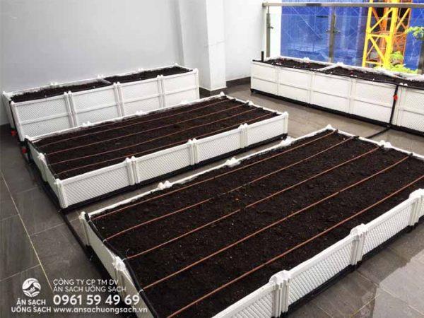 Khu vườn sử dụng chậu ghéo để tăng tối đa năng suất rau trồng