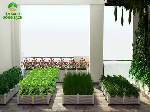 Mô hình 3d vườn rau