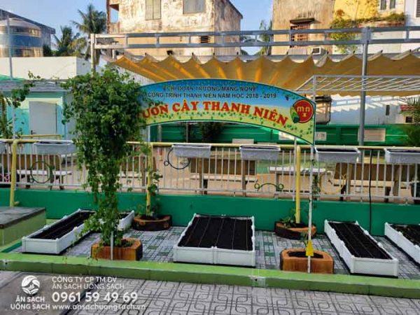 Vườn rau trở thành điểm nhấn cho ngôi trường