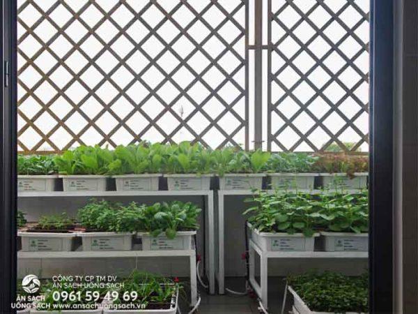 Lối ra vườn rau đặt tại ban công phía sau