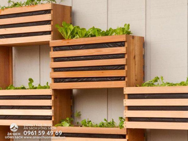 Vườn rau treo tường đẹp bằng pallet gỗ