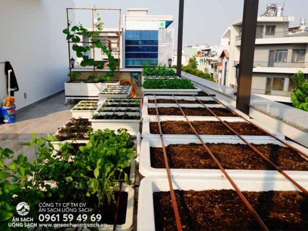 Hệ thống tưới tự động được lắp đặt trong khu vườn
